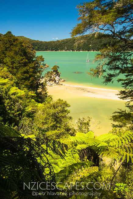 Stilwell Bay on Abel Tasman Coastal Track, Abel Tasman National Park, Nelson Region, New Zealand, NZ