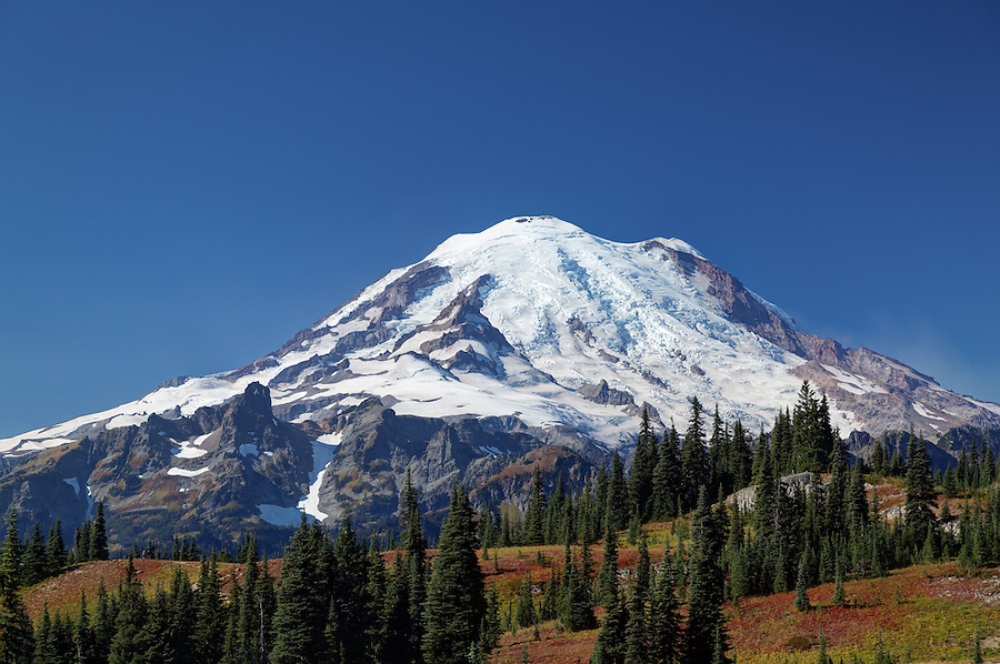 Mount Rainier above autumn colored meadows, Naches Peak Loop Trail, Mount Rainier National Park, Washington, USA