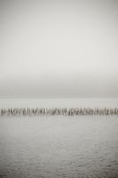 Lake Mahinapua near Hokitika, West Coast, Westland, New Zealand