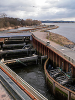 Fischtreppe erbaut von Vattenfall, in der Elbe bei Geesthacht, Schleswig-Holstein, Deutschland <br /> fish ladder built by Vattenfall, River Elbe near Geesthacht, Schleswig-Holstein, Germany
