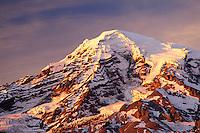 Mount Rainier at sunset, from Rucksecker Point, Mount Rainier National Park, Lewis County, Pierce County, W
