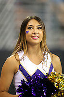 SEATTLE, WA - SEPTEMBER 16:  Washington cheerleader Payton Kalka entertained fans during the football game between the Washington Huskies and the Fresno State Bulldogs on September 16, 2017 at Husky Stadium in Seattle, WA. Washington won 63-7 over Montana.