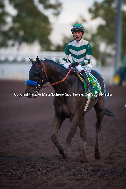 December 19, 2015: Mor Spirit with Gary Stevens up win the Grade I Los Alamitos Futurity at Los Alamitos Race Course in Cypress, California. Zoe Metz/ESW/CSM