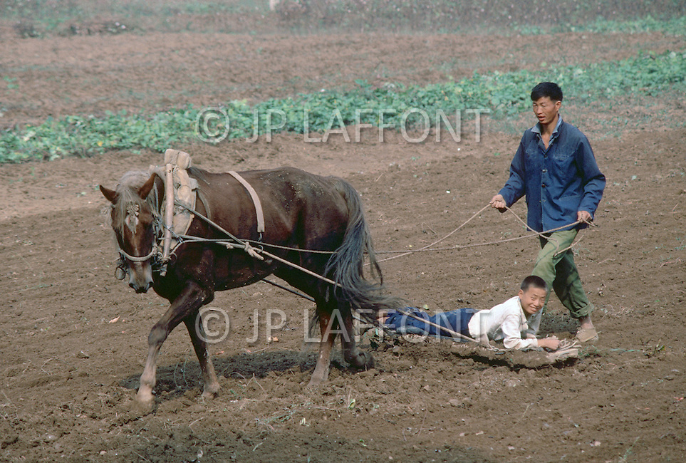 October 1984. Shang Xi Province, plowing with a horse, a family member became a weight on the plow.