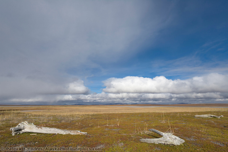Tundra wetlands along the coast of the Seward Peninsula, view to north of the Kugluiak mountains.