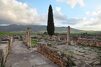 The House of the Procession of Venus, 1st - 2nd century AD, Volubilis, Northern Morocco. The house comprised an entrance vestibule, a bath complex, a colonnaded peristyle, 2 grand reception rooms, a secondary peristyle with fountain and several small reception rooms and bedrooms. Volubilis was founded in the 3rd century BC by the Phoenicians and was a Roman settlement from the 1st century AD. Volubilis was a thriving Roman olive growing town until 280 AD and was settled until the 11th century. The buildings were largely destroyed by an earthquake in the 18th century and have since been excavated and partly restored. Volubilis was listed as a UNESCO World Heritage Site in 1997. Picture by Manuel Cohen