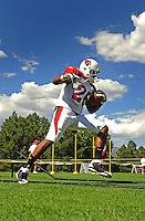 Aug. 1, 2009; Flagstaff, AZ, USA; Arizona Cardinals running back Beanie Wells during training camp on the campus of Northern Arizona University. Mandatory Credit: Mark J. Rebilas-