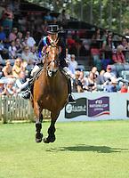 The BHS Supreme Ridden Horse Championships