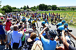 The peloton with Yellow Jersey Fabio Aru (ITA) and his Astana team on the front during Stage 14 of the 104th edition of the Tour de France 2017, running 181.5km from Blagnac to Rodez, France. 15th July 2017.<br /> Picture: ASO/Alex Broadway | Cyclefile<br /> <br /> <br /> All photos usage must carry mandatory copyright credit (&copy; Cyclefile | ASO/Alex Broadway)