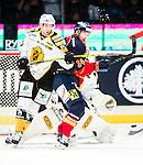 ***BETALBILD***  <br /> Stockholm 2015-09-19 Ishockey SHL Djurg&aring;rdens IF - Skellefte&aring; AIK :  <br /> Djurg&aring;rdens Daniel Brodin i kamp om pucken med Skellefte&aring;s Marcus Pettersson under matchen mellan Djurg&aring;rdens IF och Skellefte&aring; AIK <br /> (Foto: Kenta J&ouml;nsson) Nyckelord:  Ishockey Hockey SHL Hovet Johanneshovs Isstadion Djurg&aring;rden DIF Skellefte&aring; SAIK slagsm&aring;l br&aring;k fight fajt gruff