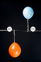 HELIUM AND ARGON FILLED BALLOONS<br /> (Variations Available)<br /> The Two Balloons Are Filled To The Same Volume<br /> After 6.5 hours the helium filled balloon is smaller than the Argon filled balloon. Helium effuses out of the balloon faster than Argon.  Light atoms or molecules effuse through the pores of the balloons faster than heavy atoms or molecules.
