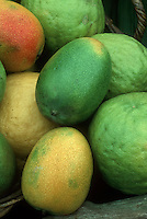 Tropical Fruit Mangos 'Kent' with Ugli Fruits