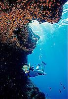 WSB-Mediterranean Off Malta