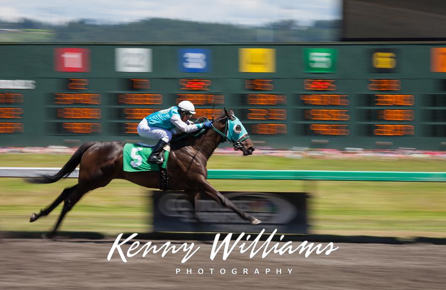 Thoroughbred Horse Racing, Emerald Downs, Auburn, Washington, USA.
