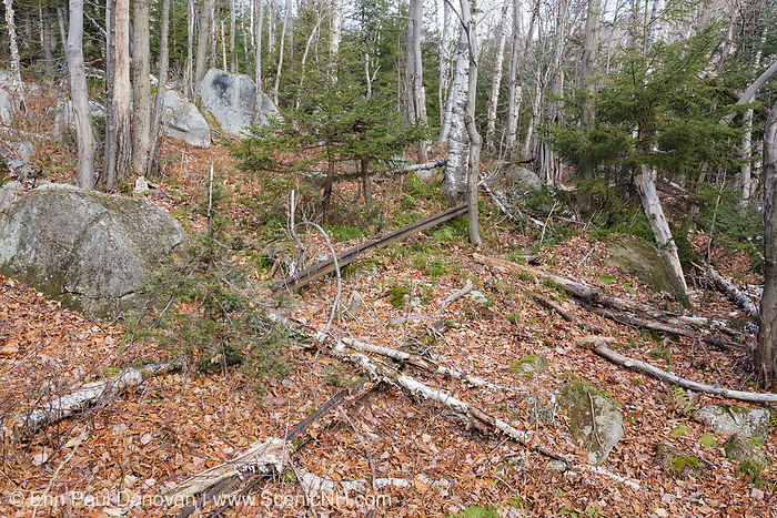 Piece of railroad track along the abandoned railroad bed, near Camp 12, of the Beebe River Railroad (1917-1942) in Waterville Valley, New Hampshire USA.