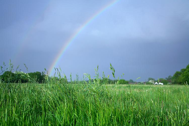 Rainbow over summer meadow during a heavy rain storm