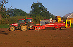 A088GD Tractor and lifter harvesting onions in a field Suffolk England