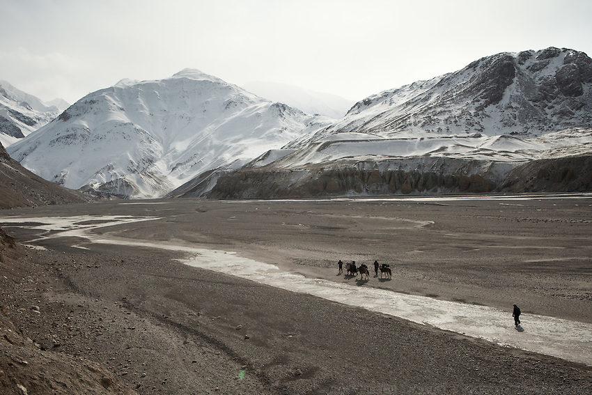 A horse and yak caravan approaches the frozen Wakhan river, the only way up to the Little Pamir, the abode of the Afghan Kyrgyz, one of the remotest high altitude community in the world.