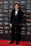 Alex Gonzalez attends to 33rd Goya Awards at Fibes - Conference and Exhibition  in Seville, Spain. February 02, 2019. (ALTERPHOTOS/A. Perez Meca)