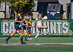 1 September 2019: University of Vermont Catamount Midfielder Angie Salvi, a Junior from Hawthorn Woods, IL, in action against the Merrimack College Warriors in Game 3 of the TD Bank Women's Soccer Classic at Virtue Field in Burlington, Vermont. The Lady Warriors rallied in the second half to defeat the Catamounts 2-1. Mandatory Credit: Ed Wolfstein Photo *** RAW (NEF) Image File Available ***