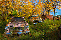 Vintage old vehicle in wrecking yard, 1960? Rambler (L), 1950s Ford Meteor (C)