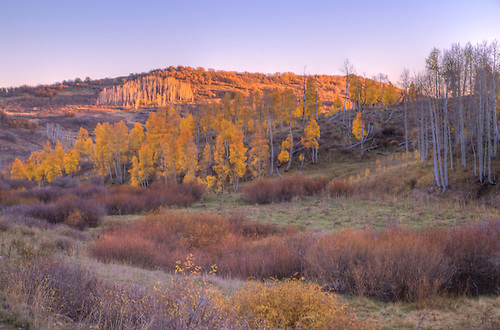 Fall foilage has arrived in the Southern Utah landscape