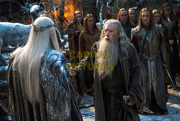 Lee Pace, Ian McKellen<br /> in The Hobbit: The Battle of the Five Armies (2014) <br /> *Filmstill - Editorial Use Only*<br /> CAP/NFS<br /> Image supplied by Capital Pictures