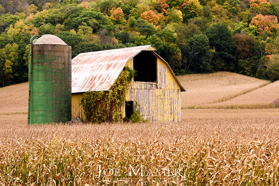 A yellow barn and green silo against autumn colored hillside in central Wisconsin.