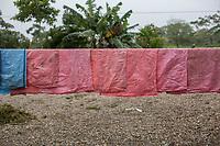 """Sacks used for packing coca leaves hang up for drying, in a farmer's plot known as coca grower """"cocalero"""", in Entre Rios, Chapare province, Bolivia. November 27, 2019.<br /> Les sacs utilisés pour l'emballage des feuilles de coca sont suspendus pour le séchage, dans une parcelle paysanne appelée """"cocalero"""", à Entre Rios, dans la province du Chapare, en Bolivie. 27 novembre 2019."""
