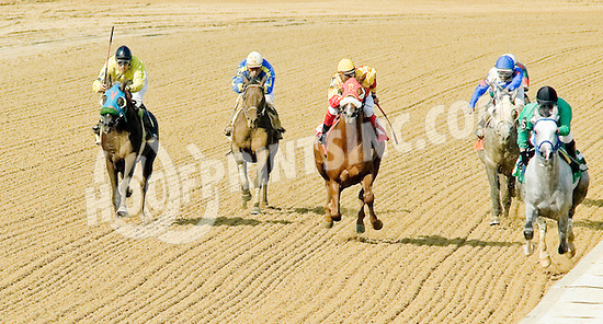 Vazs Mane Son winning The Alec Courtelis Juvenile Arabian Stakes at Delaware Park on 7/9/12