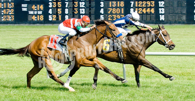 Jerry n' Elvis winning at Delaware Park on 5/31/12