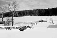 Vermont Stock Shoot