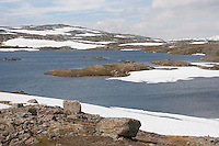 Jotunheimen, Jotunheimen-Nationalpark, Schnee, Schneefelder, Fjell, Fjäll, Tundra, Bergtundra, Nationalpark, Norwegen, Skandinavien. Jotunheimen National Park, Norway, fell, Scandinavia
