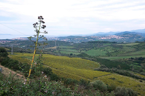 Montalbano Elicona, Sicile, Fev 2015.