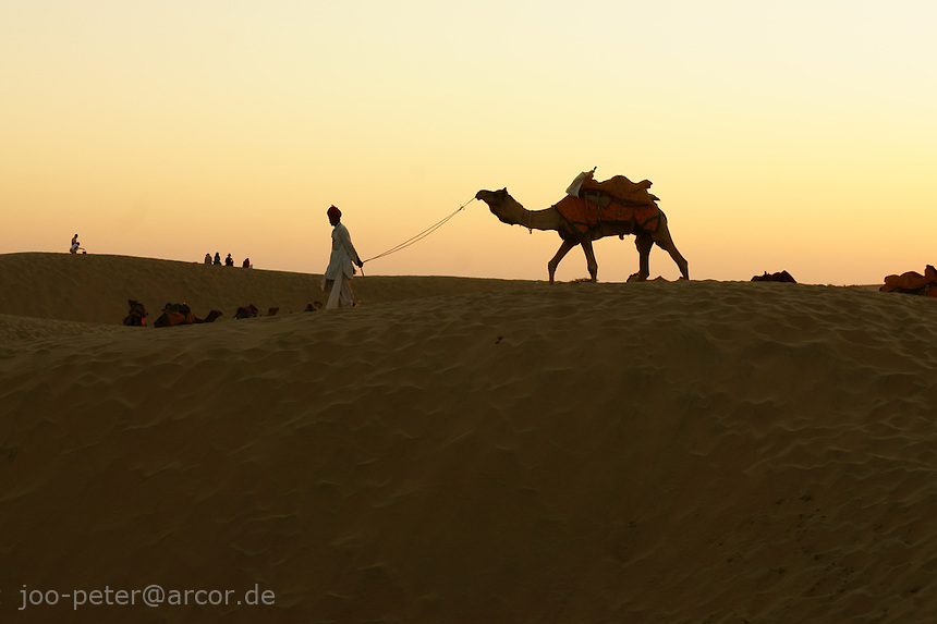 camel and guide in desert dunes, about 40km west of Jaisalmer, Rajastan, India. Camel guides resting in desert dunes at sunset time