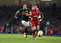 Pictured L-R: Jan Serfontein of South Africa and Alex Cuthbert of Wales chasing the bouncing ball infront of them Saturday 29 November 2014<br />