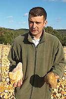 "Frédéric Pourtalié, Domaine Montcalmes, with big rocks called ""tetes de mort"" head of dead people or skulls. Vineyard of Domaine Saint Sylvestre in Puechabon. Terrasses de Larzac. Languedoc. Terroir soil. Owner winemaker. France. Europe. Vineyard. Soil with stones rocks. Galets."