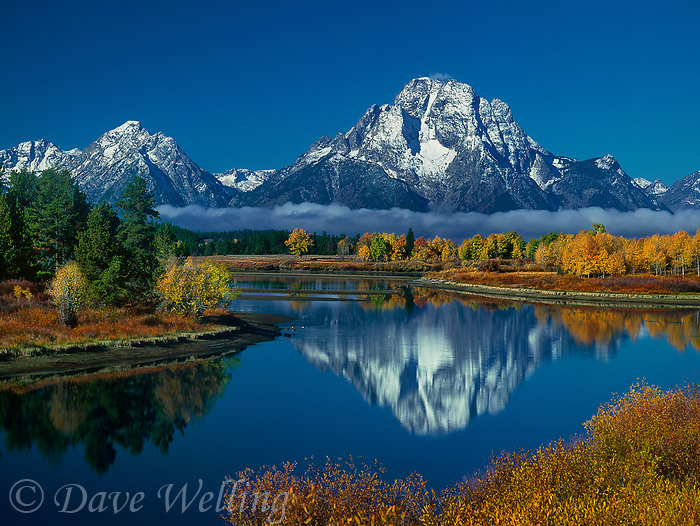 749450333 morning lights up fall colored aspens mount moran and the teton range with the snake river in the foreground at oxbow bend in grand tetons national park wyoming