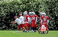 May 20, 2009; Tempe, AZ, USA; Arizona Cardinals linebacker (53) Clark Haggans does pushups as teammates participate in drills during organized team activities at the Cardinals practice facility. Mandatory Credit: Mark J. Rebilas-