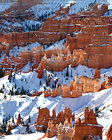 Morning winter light in Queen's Garden viewed from Sunrise Point; Bryce Canyon National Park, UT