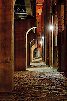 St. Louis at night by Peter Wochniak