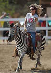 Karla Burrell rides in a zebra race at the International Camel Races in Virginia City, Nev., on Friday, Sept. 9, 2011. .Photo by Cathleen Allison
