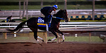October 31, 2019: Breeders' Cup Distaff entrant Midnight Bisou, trained by Steven M. Asmussen, exercises in preparation for the Breeders' Cup World Championships at Santa Anita Park in Arcadia, California on October 31, 2019. Carlos Calo/Eclipse Sportswire/Breeders' Cup/CSM