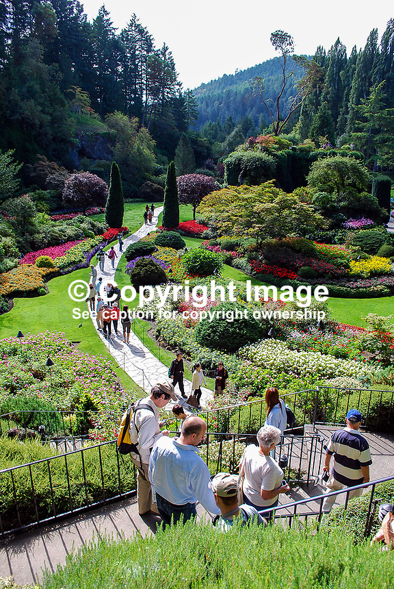 Butchart Gardens, National Historic Site of Canada,  Brentwood Bay, Vancouver Island, Canada, 200809091150, flowers, shrubs, trees, water feature, sunken garden..Copyright Image from Victor Patterson, 54 Dorchester Park, Belfast, N Ireland, BT9 6RJ...Tel: +44 28 9066 1296.Mob: +44 7802 353836.Email: victorpatterson@mac.com..IMPORTANT: For copyright information go to www.victorpatterson.com and click on Terms and Conditions