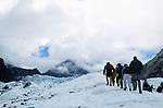 People walking on ice of Fox glacier, New Zealand