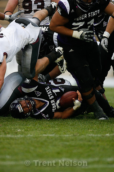 Trent Nelson  |  The Salt Lake Tribune.Weber State's Vaingamalie Tafuna is brought down during the second half, Weber State vs. Montana, college football Saturday, October 30, 2010.