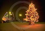 Harrisburg, PA, Walnut Street Bridge, Christmas Tree, Night Lights
