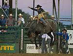 Joe Lufkin won the night's Saddle Bronc Riding event during the Reno Rodeo on Sunday, June 23, 2019.