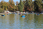Rowing boats in boating pond of Estanque, El Retiro park, Madrid, Spain
