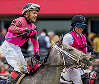 BALTIMORE, MD - MAY 19: Jockey Nik Juarez celebrates after guiding Actress #10 to a win in the Black-Eyed Susan Stakes on Black-Eyed Susan Day at Pimlico Race Course on May 19, 2017 in Baltimore, Maryland.(Photo by Scott Serio/Eclipse Sportswire/Getty Images)